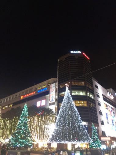 2012-12-09 18.jpg